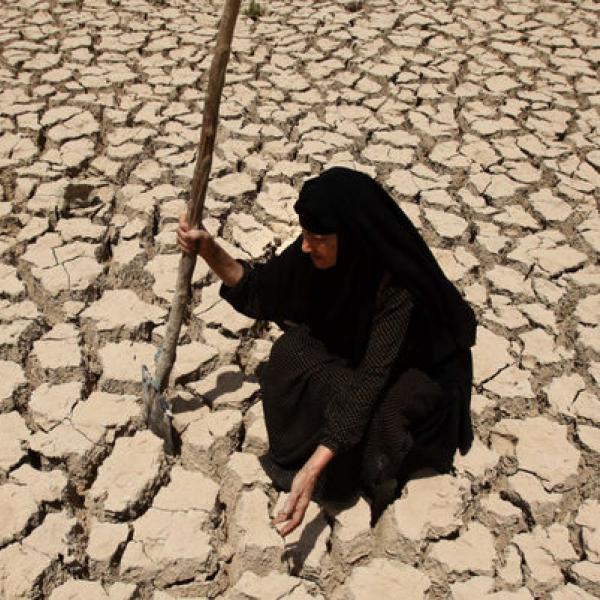 cambio climático y migraciones